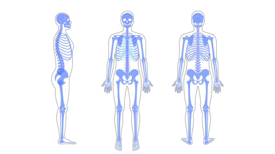 Does Osteopathic Manipulative Medicine Work?